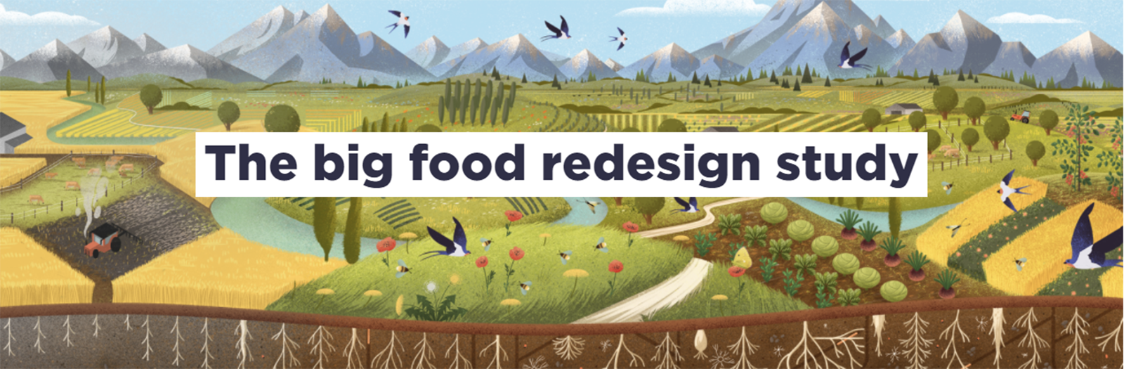 The big food redesign study