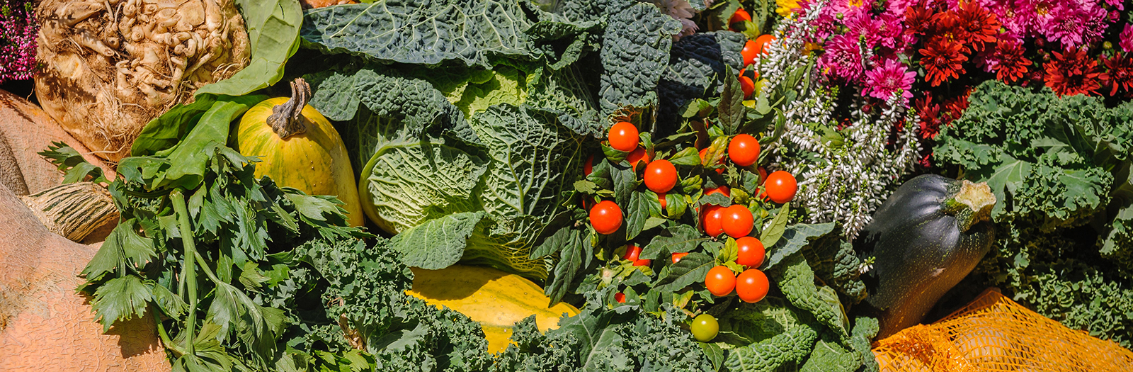 abundance of produce