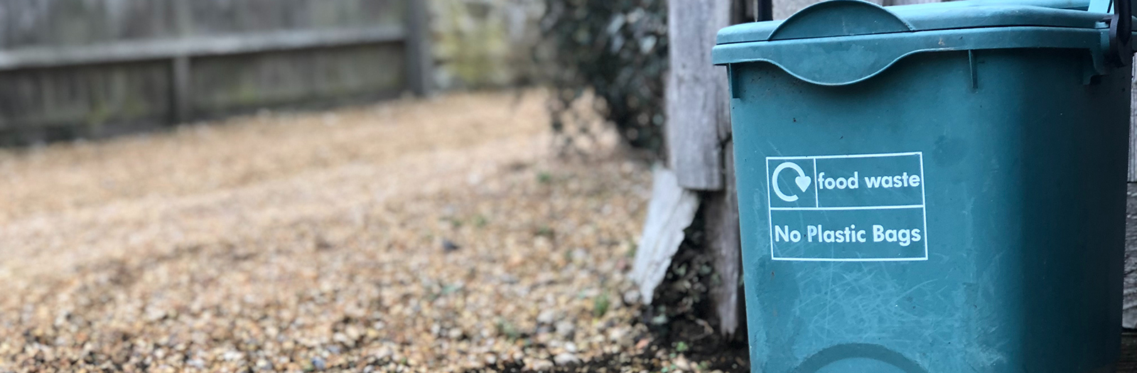 green bin for compost